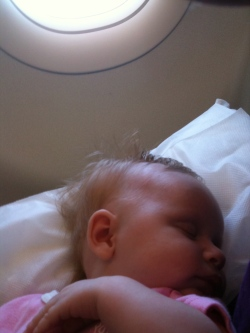 senna_sleep-on-plane_infant